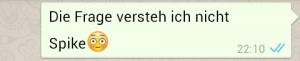 whatsapp_04